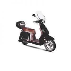 zahara-50-ext-400x400