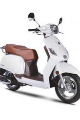 zahara-50-white-400x400